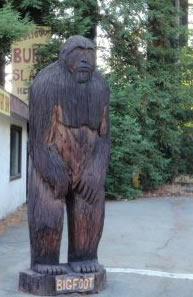 carved Bigfoot out of redwood